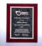 Rosewood High Lustr Plaque with Gray Marble Plate Achievement Awards