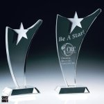 Fantasia Star Crystal Award Achievement Awards