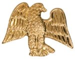 Gold Eagle Metal Chenille Letter Insignia Eagle Awards