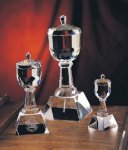 Trophy Cup Glass | Crystal Cup Trophies