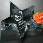 Slanted Star Paper Weight Paper Weights