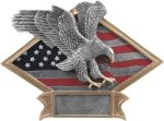 Eagle  Diamond Plate Resin  Patriotic Awards