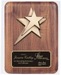 Solid American Walnut Plaque Square Rectangle Awards