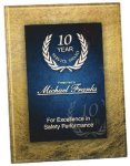 Gold & Blue Acrylic Art Plaque Award Square Rectangle Awards